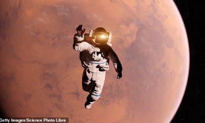 Cuando un miembro de la tripulación muere, pasarían meses o años antes de que el cuerpo regrese a la Tierra, lo que plantea una pregunta: ¿qué le sucede al cuerpo de una persona que muere en el espacio?