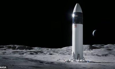 La NASA ha elegido SpaceX de Elon Musk para construir la nave espacial que llevará a la luna a la primera mujer y al siguiente hombre.  El HLS Starship de SpaceX incluirá los motores Raptor probados de la compañía, además de inspirarse en los diseños de los vehículos Falcon y Dragon.