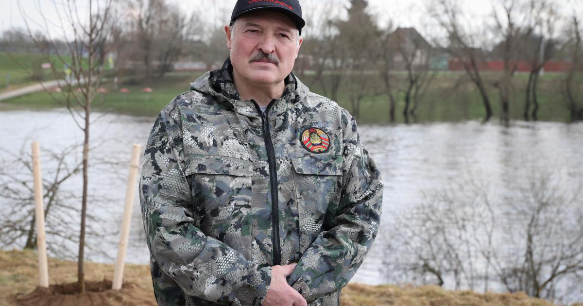 Por qué Bielorrusia se arriesgó a la ira del mundo para arrestar a un activista
