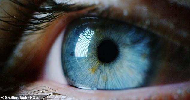 Las personas que tienen pupilas más grandes en los ojos son más inteligentes que aquellas con pupilas más pequeñas, según un nuevo estudio.  Imagen de archivo