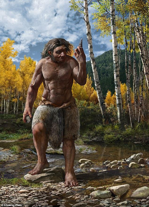 Nuestra comprensión de la evolución humana podría ser 'remodelada' mediante la identificación de un nuevo humano antiguo (Homo longi, representado) que puede reemplazar a los neandertales como nuestro pariente más cercano.