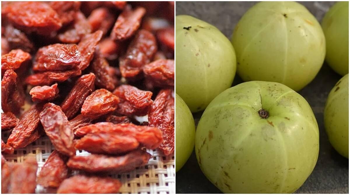 goji berry, amla, goji berry vs gooseberry, indianexpress, pooja makhija, indianexpress.com, indianexpress, amla benefits, health benefits of amla,