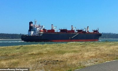 Las autoridades están buscando a dos miembros de la tripulación que se escabulleron de un contenedor del barco chino Glorious Plumeria (en la foto)