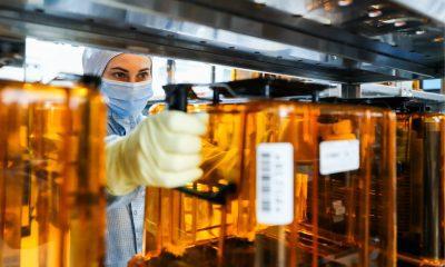 El Senado aprueba un proyecto de ley bipartidista de tecnología y fabricación de 250.000 millones de dólares destinado a contrarrestar a China