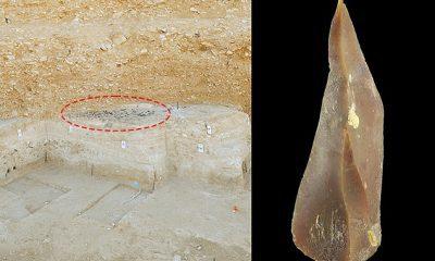 Un nuevo estudio sugiere que los humanos y los neandertales vivieron juntos en el desierto de Negev en Israel, hace aproximadamente 50.000 años.  El área de Boker Tachtit es el primer punto de migración conocido desde África para los primeros humanos en el área.  De izquierda a derecha: vista del sitio de excavación de Boker Tachtit.  Circundado: un grupo de artefactos de piedra de pedernal desenterrados;  Punta de sílex representativa del Paleolítico superior en Boker Tachtit