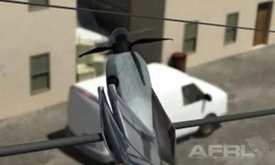 La Fuerza Aérea de los Estados Unidos está creando microdrones que pueden batir sus alas como un pájaro o un insecto.  El Laboratorio de Investigación de la Fuerza Aérea está trabajando con Airion Health para crear un microvehículo aéreo (MAV)