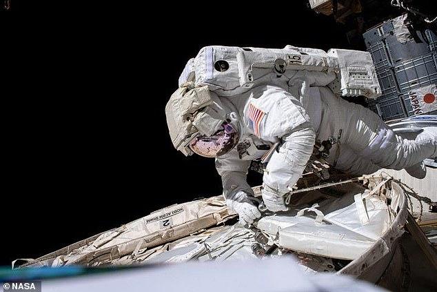 Los astronautas sufren un sistema inmunológico debilitado después de regresar a la Tierra debido a las células T regulares 'anormalmente' activas