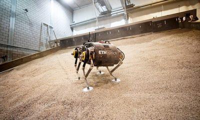 Un pequeño robot cuadrúpedo llamado 'SpaceBok' será la primera máquina motorizada en caminar sobre la superficie de Marte