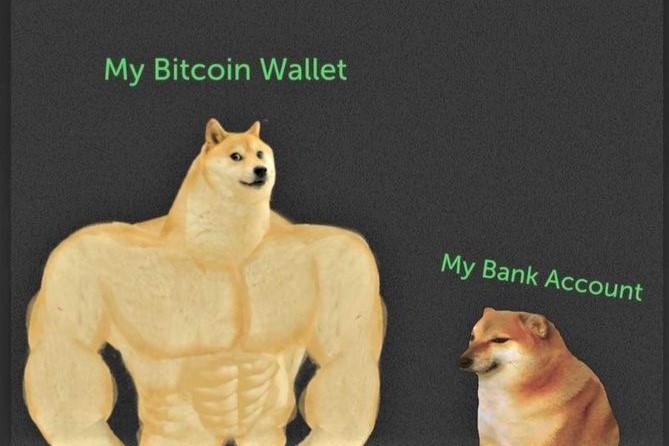 Bitcoin Noobing, Asset Teasing y 20 Crypto Jokes