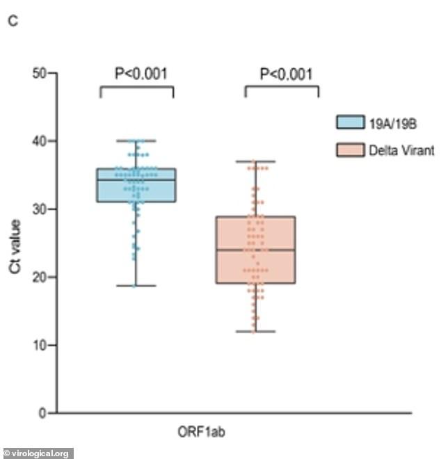 Las personas infectadas con la variante Delta tenían 1.000 veces más copias del virus en sus vías respiratorias que las personas infectadas con la cepa original (arriba), encontró un nuevo estudio.