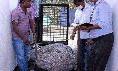 Un grupo de zafiros estrella por valor de hasta $ 100 millones ha sido descubierto en el patio trasero de un hombre de Sri Lanka por trabajadores que estaban cavando un pozo.