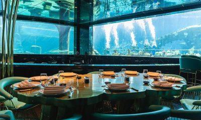 20. NEMO RESTAURANT & LOUNGE, KADRIYE, TURQUÍA: Tripadvisor promociona este restaurante como un