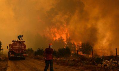 Los incendios forestales causan una mayor devastación en Turquía y Grecia