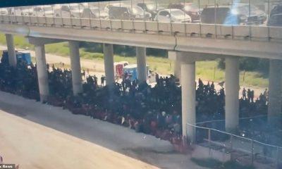 Las imágenes muestran a decenas de migrantes detenidos por agentes de la Patrulla Fronteriza parados en una larga cola debajo del Puente Anzalduas en la frontera sur entre México y Estados Unidos.