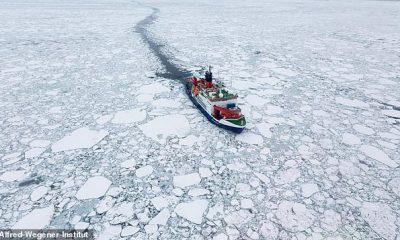 Grandes extensiones del hielo marino ártico más antiguo y grueso tienen un alto riesgo de derretirse este verano, advirtió un nuevo estudio.  El buque de investigación Polarstern se muestra a la deriva en el hielo marino del Ártico