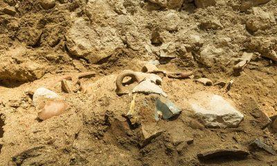 Las excavaciones de la Autoridad de Antigüedades de Israel (IAA) en el Parque Nacional de la Ciudad de David revelaron una capa de destrucción durante las excavaciones, que consistió en muros derrumbados, cerámica rota y trozos y pedazos de otros bienes.