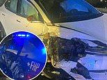 Tesla en piloto automático chocó contra el crucero de la Patrulla de Carreteras de Florida que se detuvo para ayudar al vehículo inutilizado