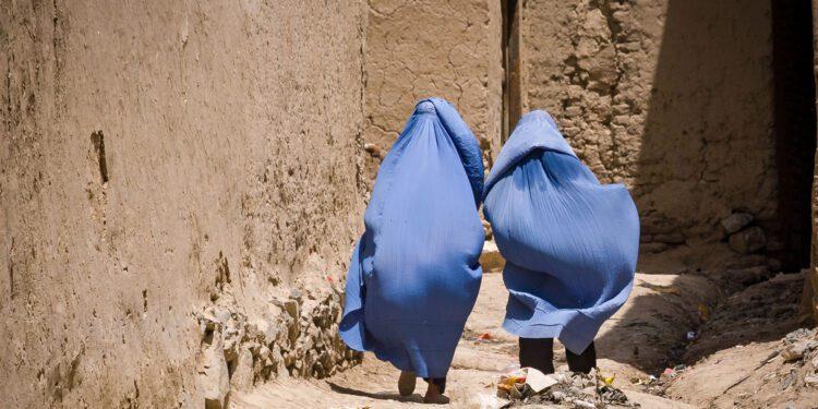 Afghanistan, Afghanistan news, Afghan women, news on Afghanistan, Taliban, Taliban news, Islamic fundamentalism, Islamic State, women's rights, Ahmed Ezzeldin