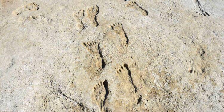 archeology footprint