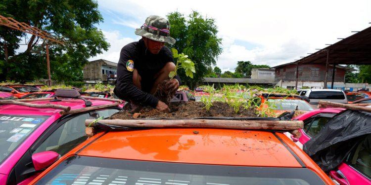 Los taxistas tailandeses detenidos por los cierres de COVID-19 convierten los techos de los automóviles en jardines