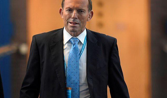 China ha calificado a Tony Abbott de 'político fallido y lamentable' después de que advirtiera que Australia podría verse arrastrada a una guerra por las tensiones entre Taiwán y Beijing.